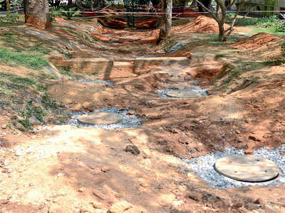 At Lalbagh, rainwater will be harvested soon