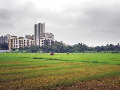 In 2 years, BMC yet to take back 26 open plots