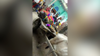 Watch: Funeral procession for Mathura buffalo taken out with great pomp