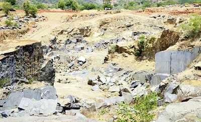 Illegal quarrying near BNP threatens wildlife