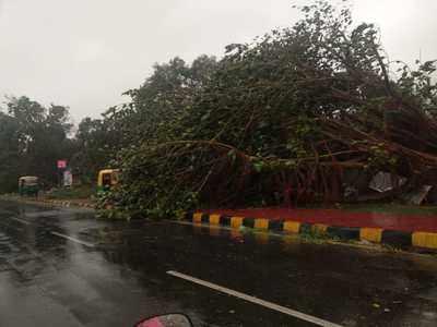 Cyclone Fani Latest updates: Eight killed in Odisha