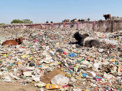 Gujarat: Bopal garbage hill to be cut to size
