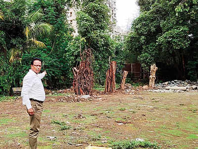 Developer gets Thane Municipal Corporation notice for 'butchering' 15 trees  replanted on Pokhran Road No. 1
