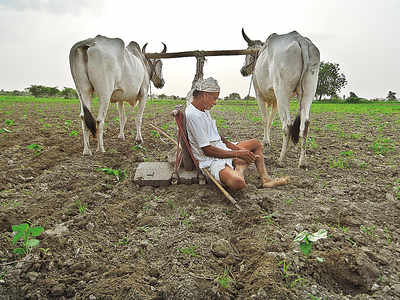 Maharashtra govt may announce farmers' loan waiver scheme this week