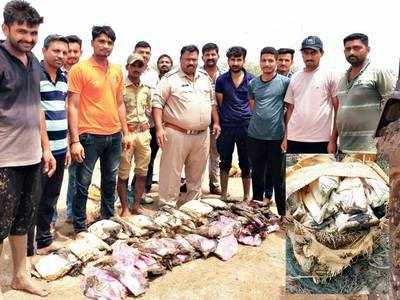 Rs 36L charas haul off Kutch coast