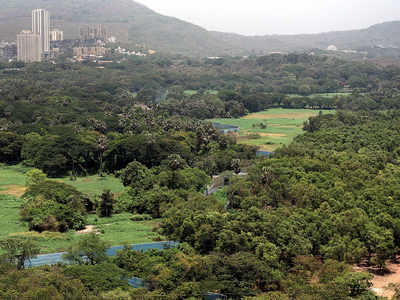 Aarey Colony: State eyes 2.03 hectare for Metro Bhavan