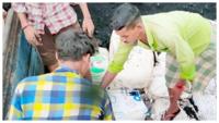 Odisha: Marijuana worth Rs 2.25 crore seized in Malkangiri, 3 held