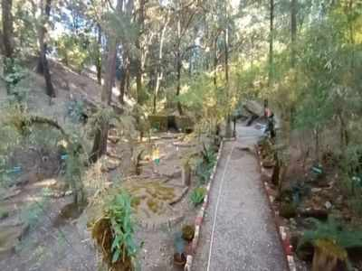 India gets it's first Moss garden in Nainital