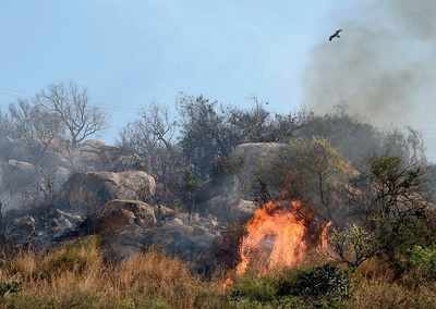 Theni fire: Karnataka bans treks till rains: KFD officers asked not to give permission for forest treks in summer