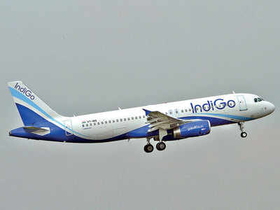 IndiGo asked to recompense two travellers who found roach on flight