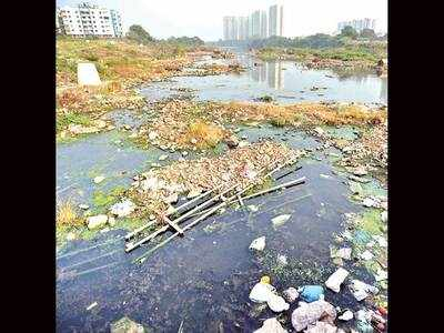 PMC riverbank project to offer boating, chowpatty