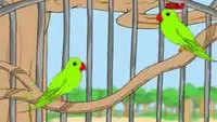 Best Children Tamil Nursery Rhyme 'Koondukili' - Kids Nursery Rhymes In Tamil