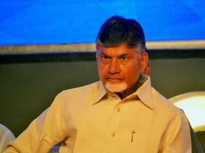 Andhra Pradesh to set up Rs 15,000 crore steel plant in Rayalaseema without Centre's help