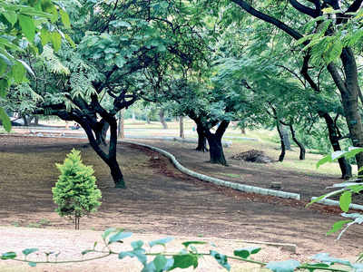 Citizens say nay to Smart City's special park plan