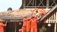 Watch: Dog stranded on hotel roof in flood-hit Kolhapur, rescued by NDRF