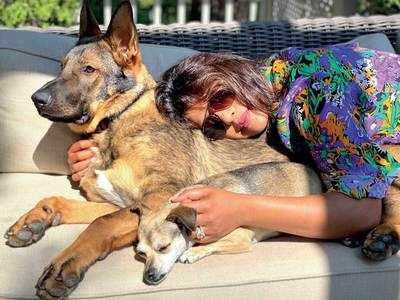 Priyanka Chopra's getting a double dose of Vitamin D