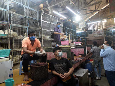Retail chicken prices touch Rs 200 per kilo