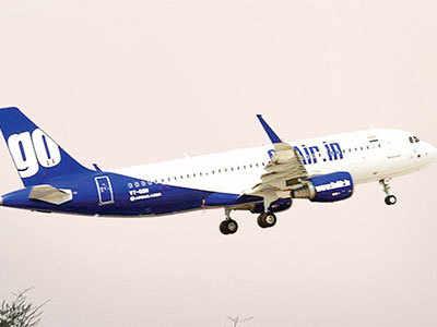 Bird strike grounds flight to Delhi