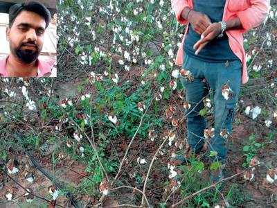 Debt-laden farmer loses his yield and life in Rajkot village