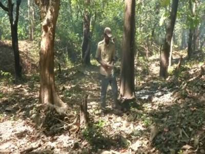 Shivamogga forest department spreads awareness about preventing forest fires