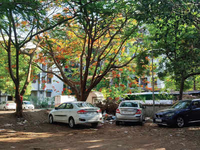 PMC fails to prove the majority of tree felling cases in court