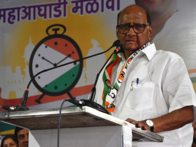 Half-naked protester appears on stage during Sharad Pawar's rally; says will continue agitation against central govt