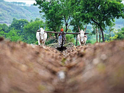 Only 23% farmers get crop loan