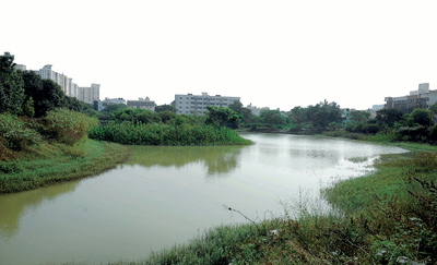 Once an area full of weeds, the Bengaluru's Akshayanagar Lake is now a star attraction. Thanks to this superhero