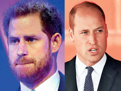 William and I are on different paths: Harry