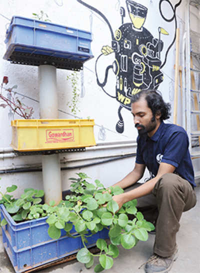 Bugs can heal the world, Bengalureans show how