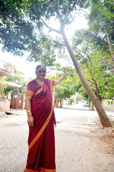 Officials dodge 74-yr-old's plea to cut tree