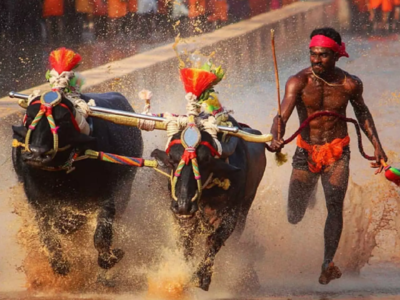 Kambala racer Srinivas Gowda's trial date yet to be fixed, to be given time for acclimatisation