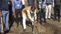 MP CM Chouhan plants sapling in Bhopal as part of 'one tree every day' campaign