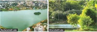 Bengaluru: A group that has revived 15 lakes is looking at ways to ensure effort is sustainable