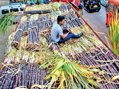 NITI Aayog recommends major reduction in sugar cultivation