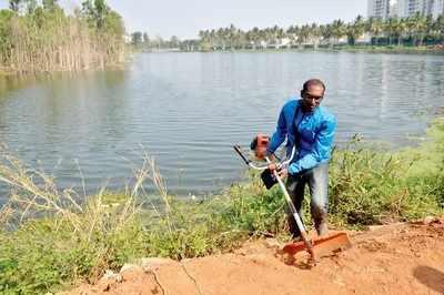 Electronics City Lakes: Bengaluru man on a mission, despite many threats