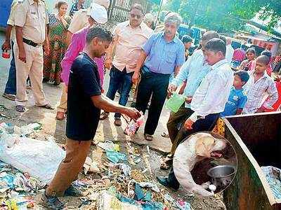 25 strays dead in Ambernath, locals say burglary plot