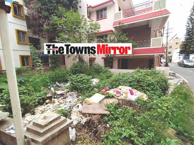 The Towns Mirror Special: A sore site for eyes and health