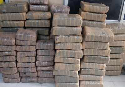 Ahmedabad Crime Branch nabs youth with 20kg ganja