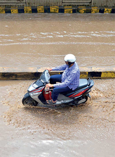Look what chopping of trees has done: Most of Bengaluru soil cannot take over 20 mm of rain