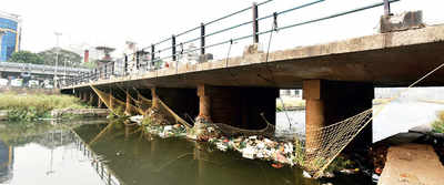 No croc, but nets fish out river waste