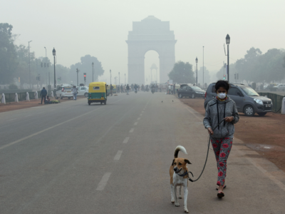 Delhi most polluted city in the world on Friday: Reports