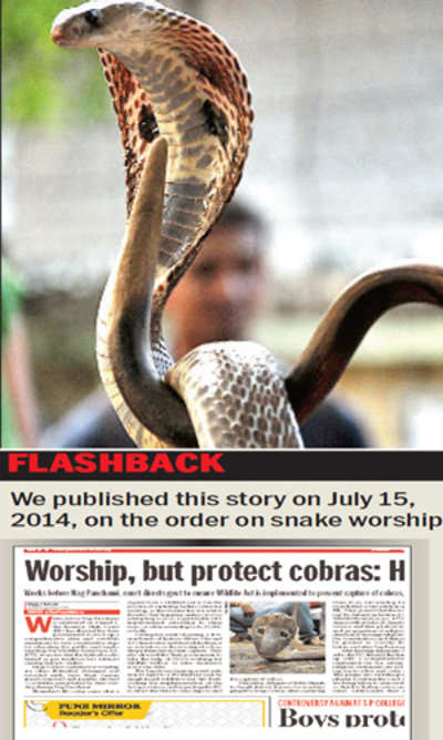 Worship of live cobras a crime: HC