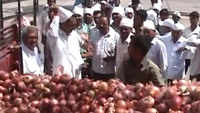 Onions leave customers teary-eyed in Maharashtra's Nashik