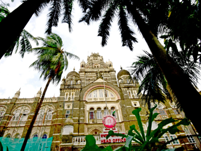 High Court refuses to vacate stay imposed on BMC's Tree Authority