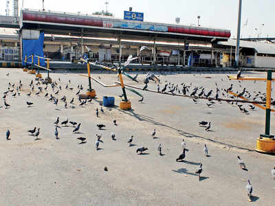 In lockdown, BWSSB locks out 345 contract workers
