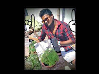 Viral selfie with ganja plants puts 2 Chennai men behind bars