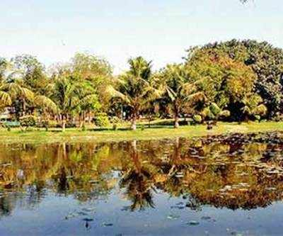 Treated water to fill lakes, irrigate plants