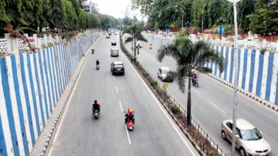 Steel flyover has no environmental clearance