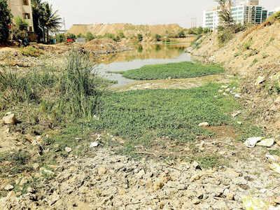 Bengaluru lakes segregated in 3 categories